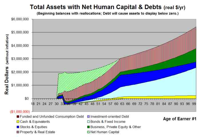 VeriPlan Total Assets Projection Graphic